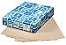"Domtar Inkjet, Laser Print Vellum Paper - Letter - 8 1/2"" x 11"" - 67 lb Basis Weight - 2000 / Case - Tan"