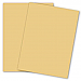 """Domtar Coloured Multipurpose Paper - Letter - 8 1/2"""" x 11"""" - 20 lb Basis Weight - Smooth - 500 / Ream - Buff"""